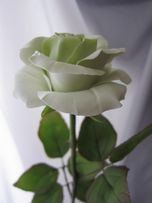 Роза. Холодный фарфор. Цветы. Подарок на день рождения, Новый Год. HM