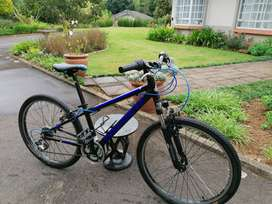 Avalanche Cosmic 24 Inch Mountain Bike