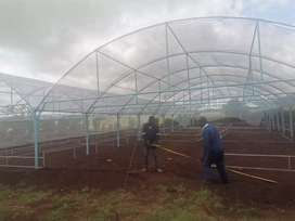 Vegetable Greenhouses// Net Houses