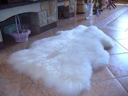 Шкура, килим, шкіра овеча, шкура овечья, шерсть, вовна, біла шкура
