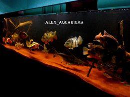 обслуживание аквариума,чистка и оформление аквариума, изготовление
