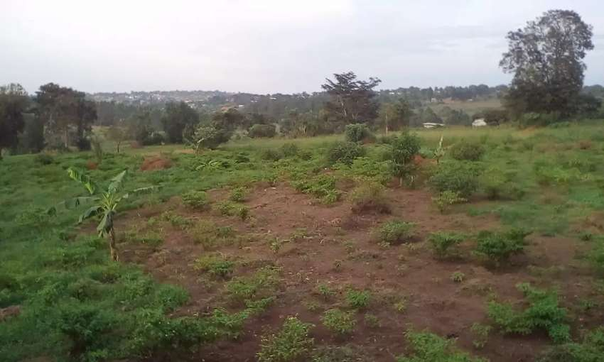 50acres on sale in Gayaza Kiwenda 4km 4m tarmac with water&electricity 0