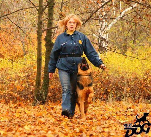 Дрессировка собак в Запорожье - команда SmartDog Запорожье - изображение 8