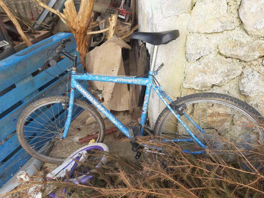 Bicikal 0