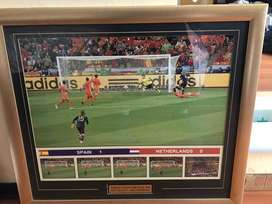 Sports memorabilia pic of the 2010 world cup winning goal.