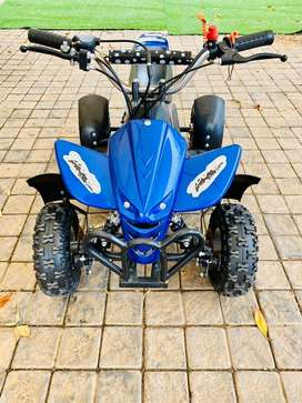 50cc Kids Quad Bike