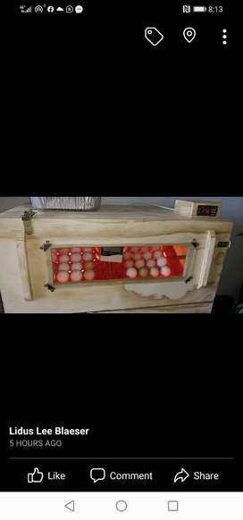 60 Egg Incubator for sale, used 3 times