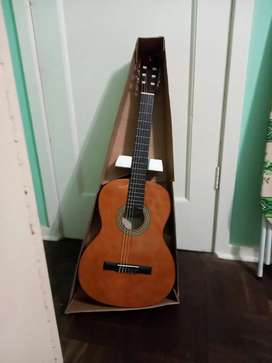 Tanglewood discovery guitar