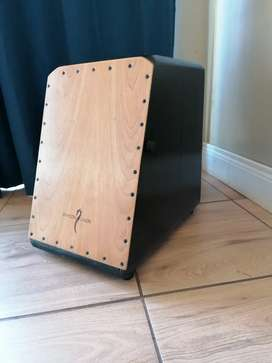 Dragon Cajon drum