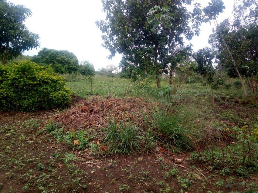 2 acres for sale in Hoima municipality at 15 millions UGX Per acre. 0