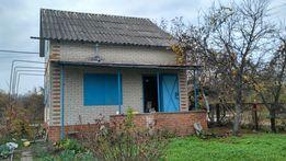 Дача, садовый участок и дом