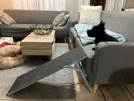 Dog ramp for dogs/puppies