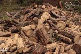 Продам дрова дуб, акация, тополь, ясень. В наличии любой обьем