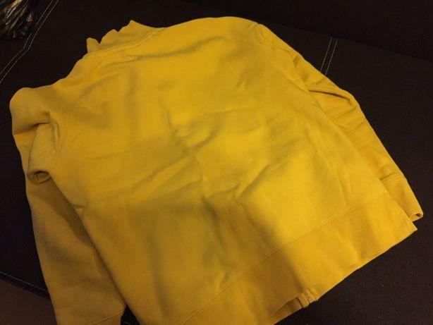 Bluza męska firmy HAUSE rozmiar XL Gostynin - image 2