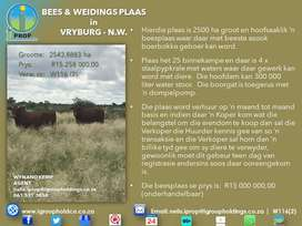 W116(2) - CATTLE AND GRAZING FARM in Vryburg.