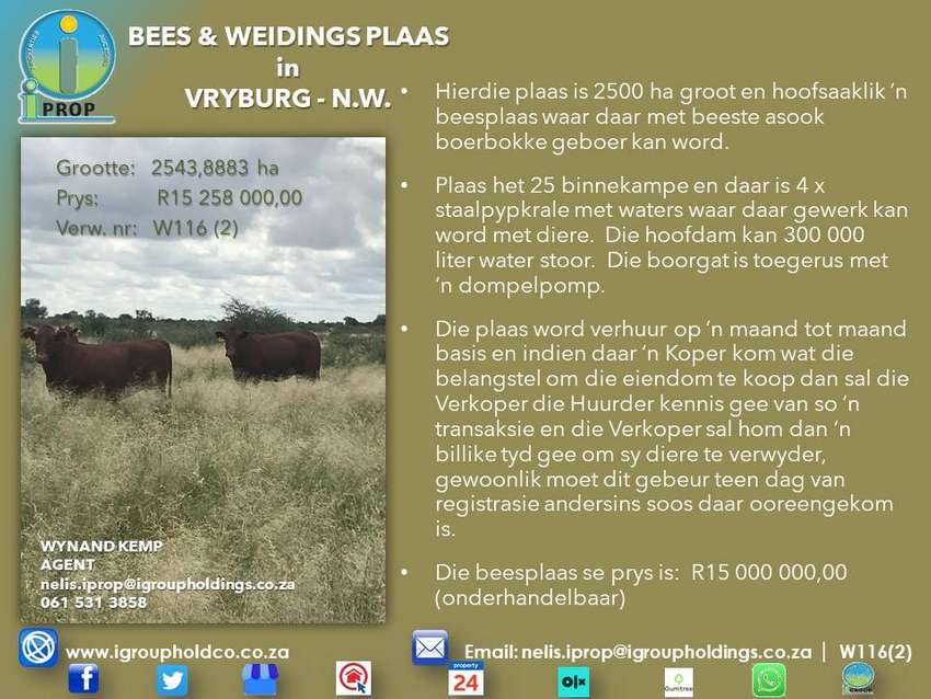 W116(2) - CATTLE AND GRAZING FARM in Vryburg. 0