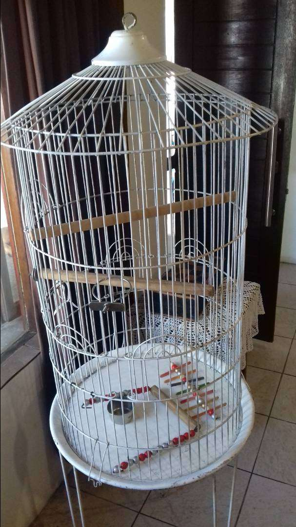 Parrot cage 0