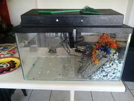 Large Fish tank for sale including all accessories