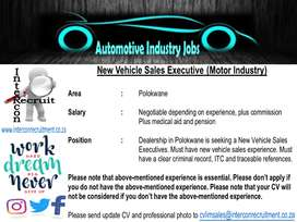 New Vehicle Sales Executive (Motor Industry)