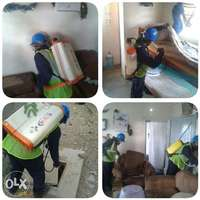 Fumigation and pest control services. 0