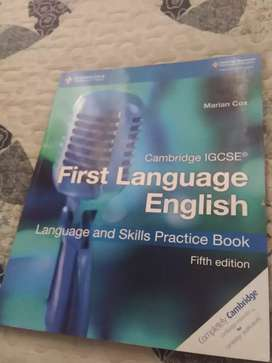 English First Language IGCSE practice and skills practice book
