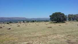 Vacant land for sale in Hornsoord AH