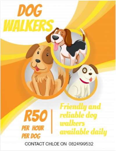Friendly and Reliable Dog Walker available daily 0