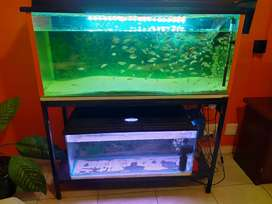 Both fishtanks for sale