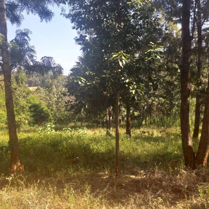 KAREN LAND FOR SALE 0