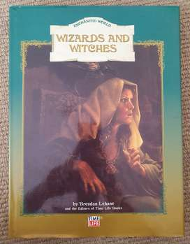 """Wizards and Witches (Part of the """" Enchanted World """" Series)"""