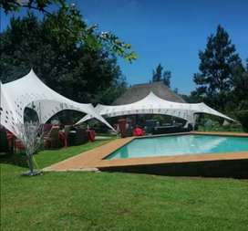 Spider/Cheese Stretch tents for sale