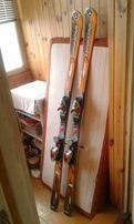 Лыжи dinostar skicross 08!