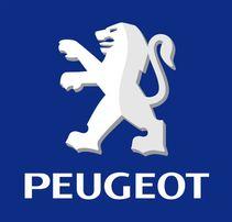 На Peugeot Пежо 106 205 206 207 306 307 308 309 405 406 407 508 605..