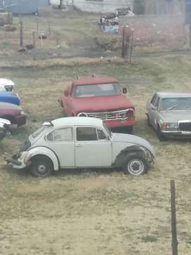Beetle needs restoration