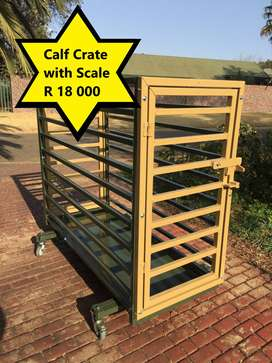 Calf Crate with Scale