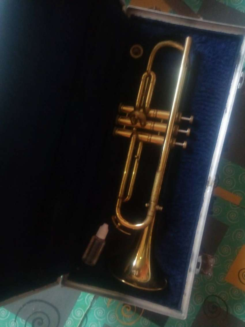 This is the best choice for trumpeter.  It has all you need. 0
