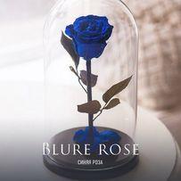 Роза в стеклянной колбе +( Коробка,Гравировка) .Тренд 2018 года