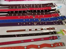 We supply dog : harnesses, collars, bowls, dinner tables and more...