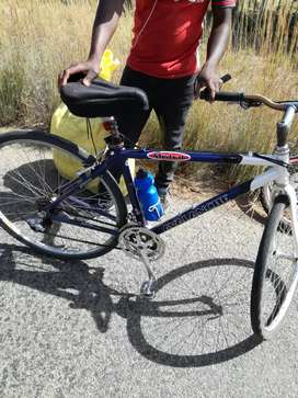 I am looking for bicycle like this I want to buy