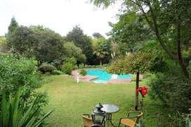Sandton - rustic Cottage in beautiful garden to let