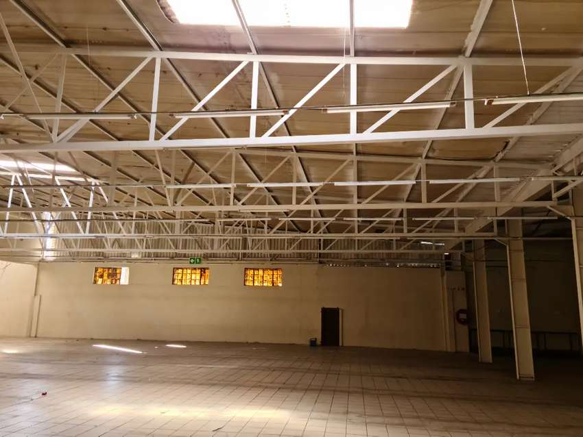 Commercial property for rent in springs 0
