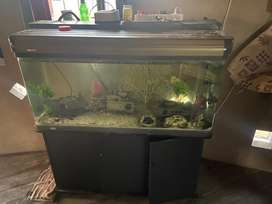 Fish tank 1.2 m with two big filters