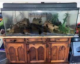 Fish tank for sale in good condition with all exsesories