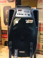 Портативная блютуз колонка с USB SD Temeisheng SL15-02+2 микрофон 400W