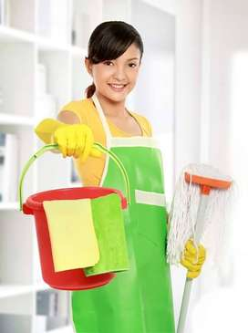 Domestic helpers and nannies available