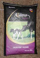 ALAMO REPRO NON GMO - premiks dla krów mlecznych, rozród, odporność.