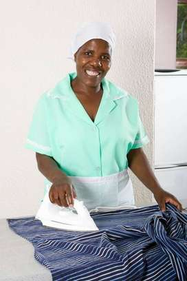 Iam a domestic and nanny recruitment. Cleaning  Services.
