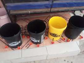 Chicken  water drinking cups  and buckets