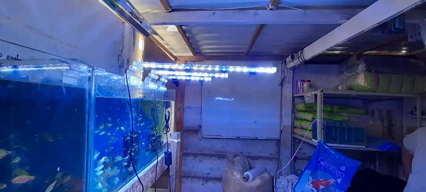 Brand new glass aquarium lights