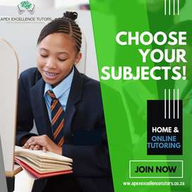 20% Home Tutoring and Online Lessons